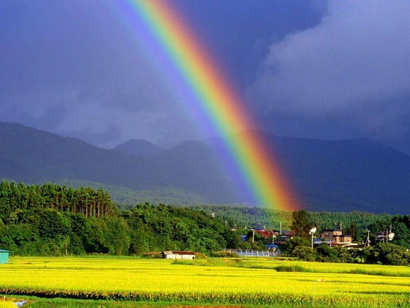 开心快乐每一天!青蓝绿紫彩云间,映日斑斓水雾悬.化雨天龙生